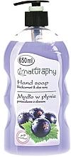 Düfte, Parfümerie und Kosmetik Flüssigseife mit Johannisbeere und Aloe Vera - Bluxcosmetics Naturaphy Hand Soap