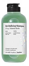 Düfte, Parfümerie und Kosmetik Revitalisierendes Shampoo mit natürlichen Kräutern - Farmavita Back Bar No4 Revitalizing Shampoo Natural Herbs