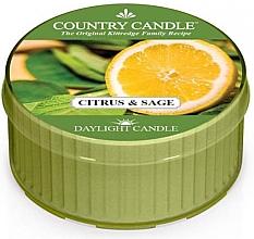 Düfte, Parfümerie und Kosmetik Duftkerze Citrus & Sage - Country Candle Citrus and Sage Daylight