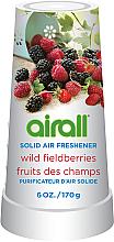 Düfte, Parfümerie und Kosmetik Fester Lufterfrischer Waldbeeren - Airall Air Freshener Solid Wild Berries