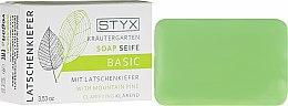 Düfte, Parfümerie und Kosmetik Klärende Seife mit Latschenkiefer - Styx Naturcosmetic Basic Soap With Mountain Pine