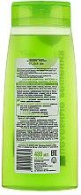 Shampoo für fettiges Haar mit Schöllkraut und australischem Teebaumöl - Bielita Celandine and Australian Tea Tree Shampoo — Bild N2
