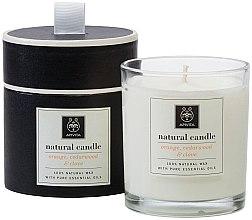 Düfte, Parfümerie und Kosmetik Natürliche Duftkerze Orange, Zedernholz und Gewürznelke - Apivita