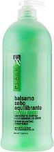 Düfte, Parfümerie und Kosmetik Talgregulierender Conditioner für fettiges Haar mit Brennnesselextrakt und ätherischem Zitronenöl - Black Professional Line Sebum-Balancing Conditioner