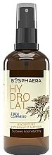 Düfte, Parfümerie und Kosmetik Holunderblütenwasser-Spray - Bosphaera Hydrolat