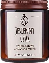 Düfte, Parfümerie und Kosmetik Duftende Soja-Kerze Herbstzauber - Bosphaera Autumn Charm Candle