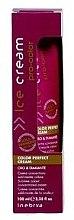 Düfte, Parfümerie und Kosmetik Konzentrierte Farbschutz-Creme für coloriertes Haar - Inebrya Pro-Color Color Perfect Cream