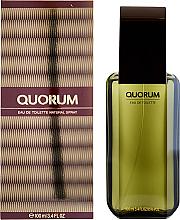 Düfte, Parfümerie und Kosmetik Antonio Puig Quorum - Eau de Toilette