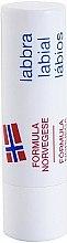 Düfte, Parfümerie und Kosmetik Schützendes Lippenbalsam SPF 10 - Neutrogena Norwegian Formula Lip Balm SPF4
