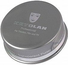 Düfte, Parfümerie und Kosmetik Transparenter Gesichtspuder - Kryolan Translucent Powder