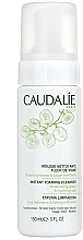 Düfte, Parfümerie und Kosmetik Reinigungsschaum & Make-up Entferner mit Weintrauben und Salbei - Caudalie Cleansing & Toning Instant Foaming Cleanser