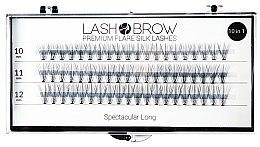 Düfte, Parfümerie und Kosmetik Wimpernbüschel-Set - Lash Brown Premium Flare Silk Lashes Spectacular Long