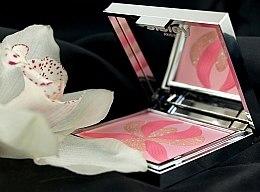 2in1 Highlighter- und Rougepalette - Sisley L'orchidee Rose — Bild N3
