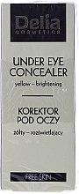 Düfte, Parfümerie und Kosmetik Makeup Set - Delia -(Augen-Concealer/10ml + Foundation/30ml)